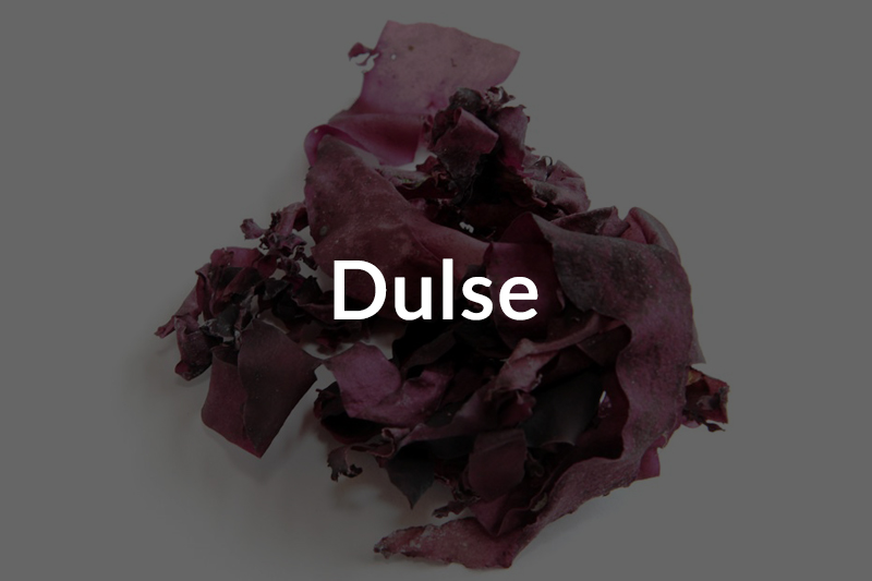 Dulse-over