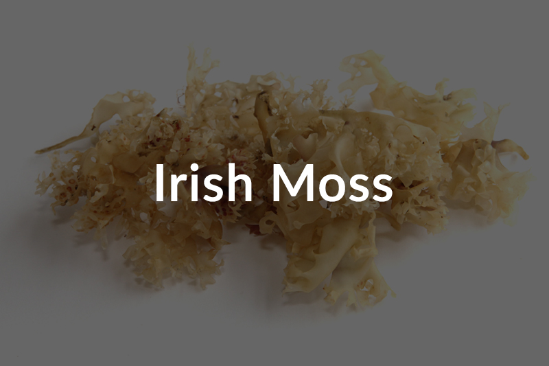 irish-moss-over