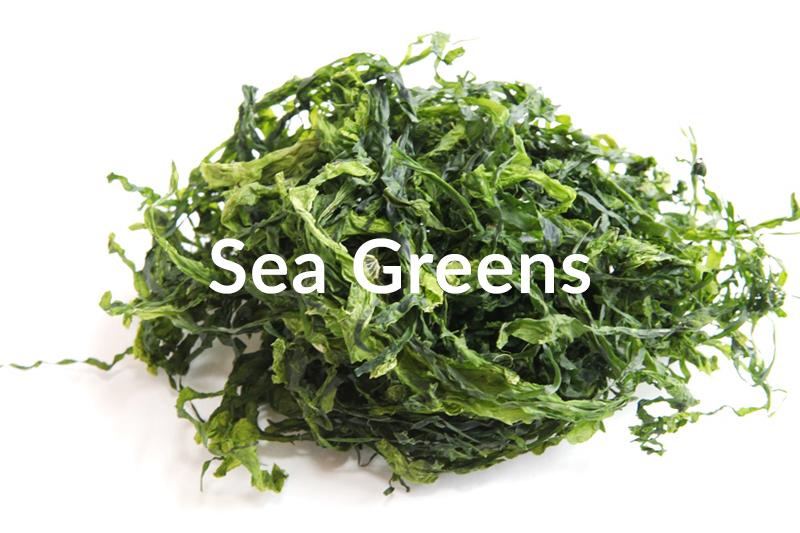 sea-greens
